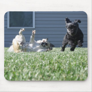 Dogs Playing Mousepad