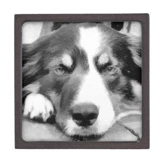 DOGS PREMIUM TRINKET BOX