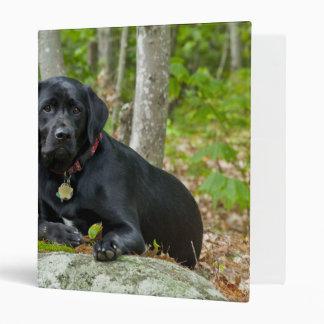 Dogs Puppies Black Lab Chocolate Labrador Retrieve Binder