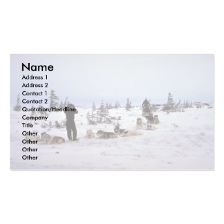 Dogs resting, Churchill, Manitoba Double-Sided Standard Business Cards (Pack Of 100)