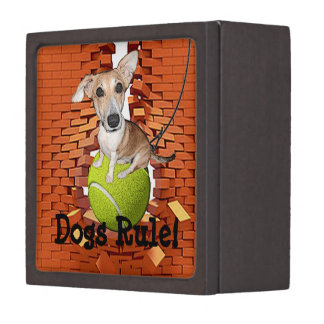 Dogs Rule Gift Box