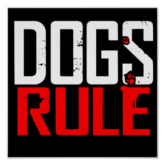 DOGS RULE POSTER