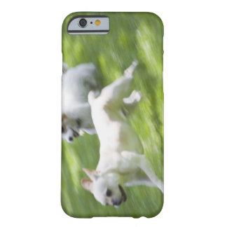 Dogs running in lawn barely there iPhone 6 case