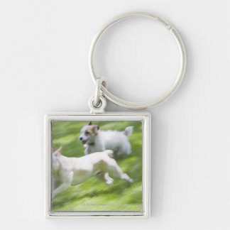 Dogs running in lawn keychain