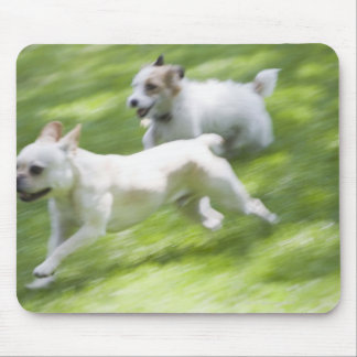 Dogs running in lawn mouse pad