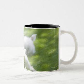 Dogs running in lawn Two-Tone coffee mug
