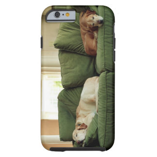 Dogs sleeping on sofa tough iPhone 6 case