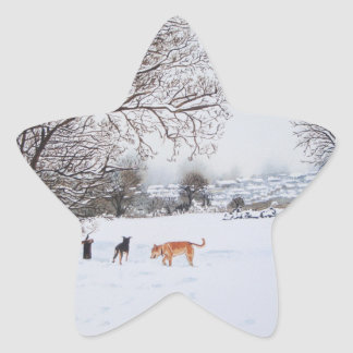 dogs snow scene landscape with trees painting star sticker