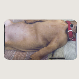 Dog's Stomach iPod Case-Mate Case