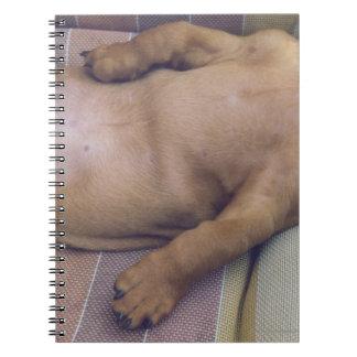 Dog's Stomach Spiral Notebook