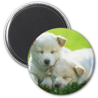DOGS SUPPORT OBAMA REFRIGERATOR MAGNET