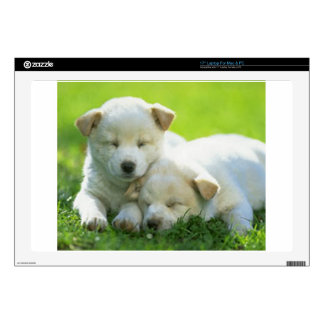 """DOGS SUPPORT OBAMA 17"""" LAPTOP DECAL"""