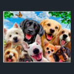 "Dogs take group selfie postcard<br><div class=""desc"">yorkshire Maltês Chihuahua pug , labrador Dachshund puppy canine ,  brown  love friend  lovely  ,  tongue mammal domestic puppys  ,  puppy mammal  brown  purebred, canine puppies dog doge , small  dogs pet  dogs ,  dog lovers funny dogs , cute  dogs crazy dogs , Cocker spaniel bull terrier</div>"