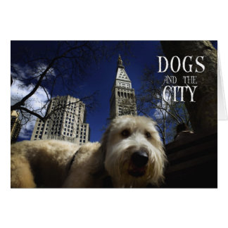 DOGS & THE CITY - FUNNY POSTCARDS GREETING CARDS