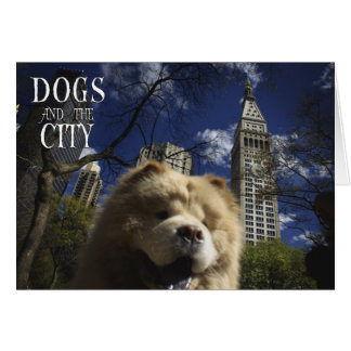 DOGS & THE CITY - FUNNY POSTCARDS GREETING CARD
