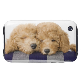 Dogs Tough iPhone 3 Case