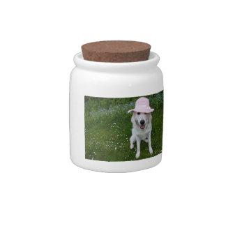 Dog's treat jar candy jar