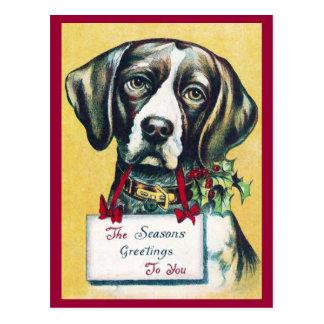 Dog's Vintage Holiday Post Card