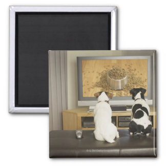 Dogs watching dog dish with food on TV 2 Inch Square Magnet