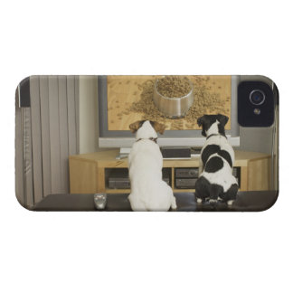 Dogs watching dog dish with food on TV iPhone 4 Case-Mate Case