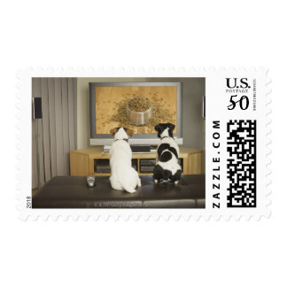 Dogs watching dog dish with food on TV Postage