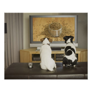 Dogs watching dog dish with food on TV Poster