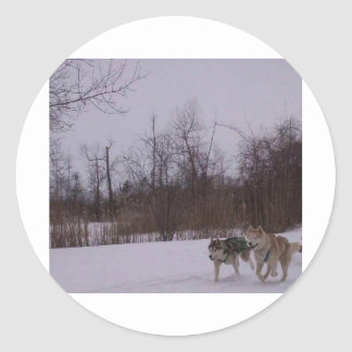 Dogsledding fun classic round sticker