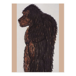 Dogsquatch giant man postcard