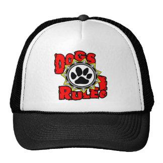DogsRule_Logo_Color Gorras De Camionero