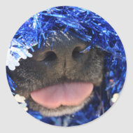 DogTongueOutBlueTinselsimpleframe sticker