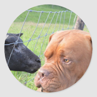 Dogue de Bordeaux Classic Round Sticker