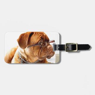 dogue de bordeaux dog wearing glasses bag tag