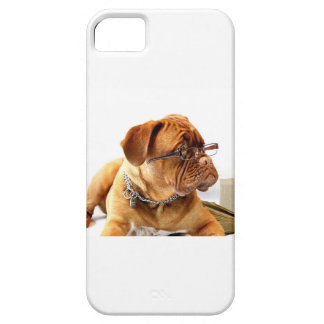 dogue de bordeaux dog wearing glasses iPhone SE/5/5s case