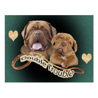 """Dogue De Bordeaux """"Double Trouble"""" apparel & Gifts Postcard"""