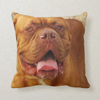 Dogue de Bordeaux -  French Mastiff breed picture Pillow