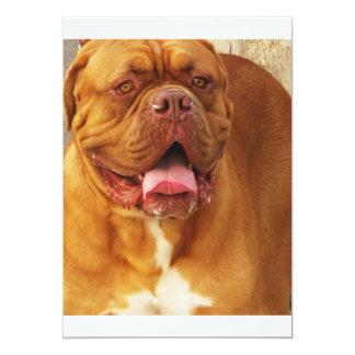 Dogue de Bordeaux French mastiff 5x7 Paper Invitation Card