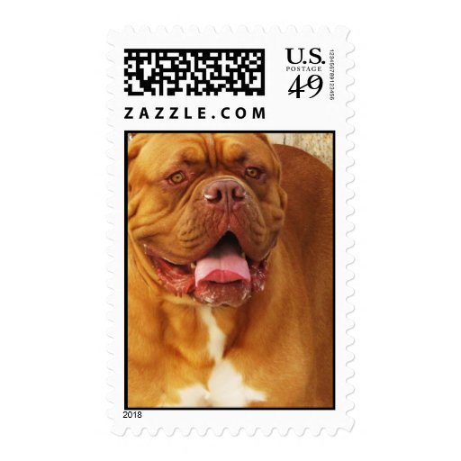 Dogue de Bordeaux - French Mastiff POSTAGE STAMP