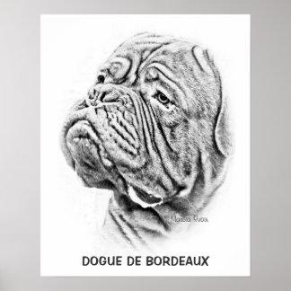Dogue De Bordeaux - French Mastiff Poster