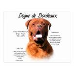 Dogue de Bordeaux History Design Postcard