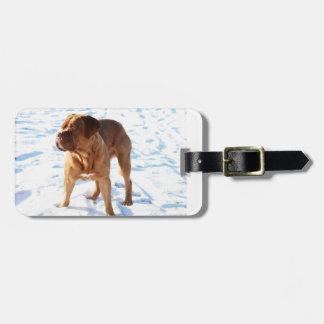 Dogue de Bordeaux in snow.png Bag Tag