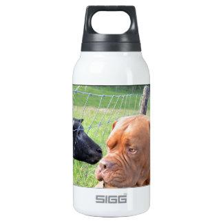 Dogue de Bordeaux Insulated Water Bottle