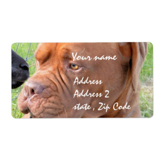 Dogue de Bordeaux Label