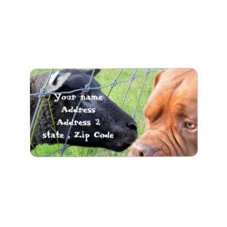 Dogue de Bordeaux Label