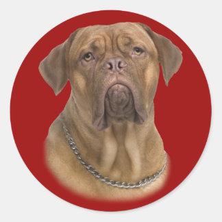 Dogue De Bordeaux Portait Classic Round Sticker