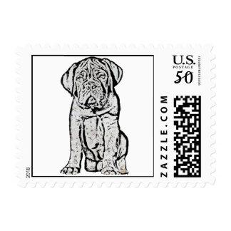 Dogue de Bordeaux puppy Postage