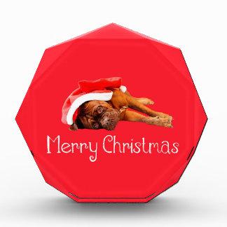 Dogue De Bordeaux Santa Hat Merry Christmas Award