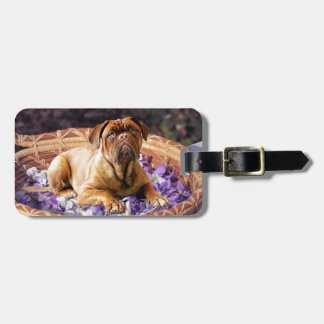Dogue de Bordeaux Sitting on Basket full of Petals Luggage Tag