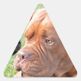 Dogue de Bordeaux Triangle Sticker