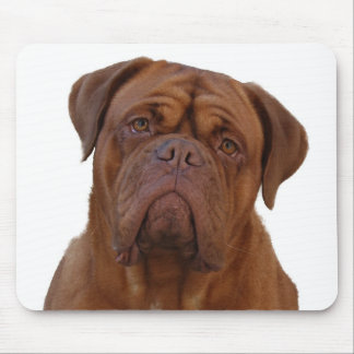Dogue de Bourdeaux Mouse Pad