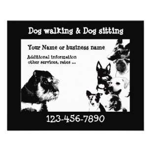 dogwalker 3 flyer